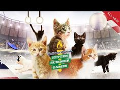 'The Kitten Summer Games' Are Hallmark Channel's Answer to the Olympics | Mental Floss