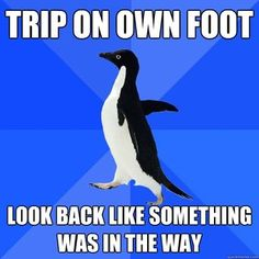 Socially awkward penguin.
