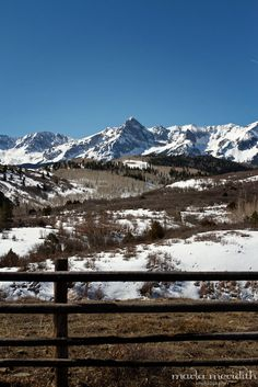 Photos from the Colorado Countryside | Horse & Cattle Ranches in Hotchkiss, CO | FamilyFreshCooking