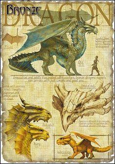 Dragons!: