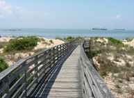 This is First Landing State Park in Virginia Beach.  So fun!  Reservations 1-800-933-PARK