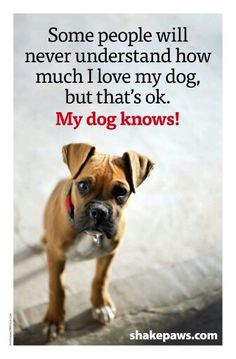 ''Some people will never understand how much I love my dog, but that's ok. MY DOG KNOWS!