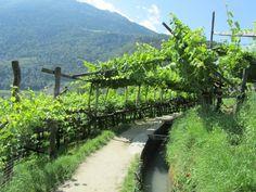 Südtirol - Algunder Waalweg
