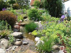 Bachlauf - Pflanzen, Ideen und Tipps | Bachlauf, Gärten und Teiche