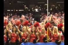 Louisville Ladybirds cheering on the Cardinals at the Allstate Sugar Bowl