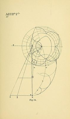 "Diagrams from ""Geometrical psychology"" or ""The science of representation""of B. W. Betts (1887), by Louisa S. Cook"
