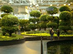 Set in the middle of the city, this indoor garden spans three acres and is home to waterfalls, trees and thousands of plants. Fun Indoor Activities, Rainy Day Activities, Call Centre, Open Library, O Canada, Tour Tickets, New Adventures, Banff, Indoor Garden