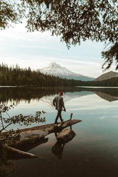 Mt Hood National Forrest | ( by Bayley June )