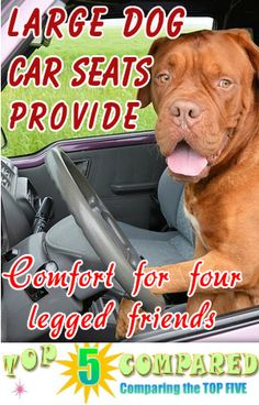 Having A Large Dog Car Seat On Board Your Vehicle Would Also Accommodate Two Smaller Dogs If You Preferred See The Top 5 Suggestions To Keep Happy