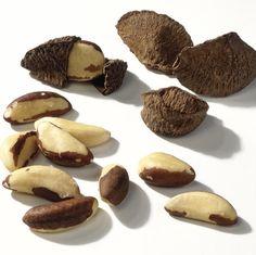 Die äußere Kapsel der Paranuss ist aus Holz und sehr hart. Auch die Samenschalen der Samen sind stark verholzt.