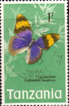 Tanzania 1973 Butterflies Fine Used SG 167 Scott 44 Other Tanzania and British Commonwealth Stamps HERE!