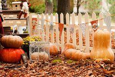 """Вдохновение: Старт Совместного Проекта """"Осенний Декор"""". Делаем баннер!"""