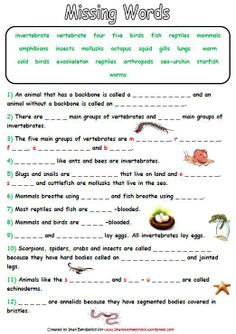 Classification Of Vertebrates Worksheets Classification Of Vertebrates, Animal Classification Worksheet, Classes Of Vertebrates, Vertebrates And Invertebrates, Biomes, Biology Lessons, Science Biology, Science Lessons, Teaching Science