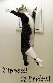 Yippee!! It's Friday!!