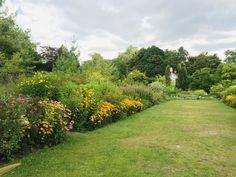 Botanical Gardens, Perennials, Harvest, Toronto, Picnic, Country Roads, Picnics, Perennial