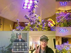 Test base in Portland of Ecospeed .great Job~Jay $699/unit including shipping cost to your door,overnight delivery 1500w monster grow light UV-IR Full spectrum .3 switches . veg/bloom switchable . www.ecospeedled.com  carter@ecospeedled.com