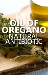 Dr Oz says Oil of Oregano is nature's most powerful antibiotic. Learn how it can keep your family healthy! http://www.drozfans.com/dr-ozs-home-remedies/dr-oz-apple-cider-vinegar-dandruff-remedy-oil-of-oregano-review/