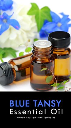 Are you looking for an oil that can relief your stress? Blue tansy essential oil can be the best option! Read this post to discover the many benefits of this Valor Essential Oil Uses, Blue Tansy Essential Oil, Blue Tansy Oil, Essential Oil Diffuser Blends, Best Essential Oils, Young Living Essential Oils, Allergy Remedies For Kids, Oils For Sinus, Aromatherapy Recipes