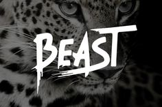 Beast - Brush Font by Tugcu Design Co. on Creative Market