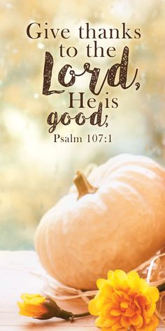 Church Banner - Fall & Thanksgiving - Give thanks Thanksgiving Iphone Wallpaper, Church Banners, Give Thanks, Business Quotes, Good Books, Thankful, Pumpkin, Good Things