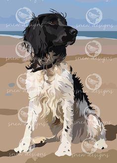 'Obi on the beach' snewdesigns