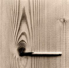 This amazingly creative photos are product of Spanish photographer called Chema Madoz. Jose Maria Rodriguez Madoz (born better known as Chema Woods Photography, Conceptual Photography, Abstract Photography, Macro Photography, Creative Photography, Photography Ideas, Unity Photography, Illusion Photography, Contrast Photography