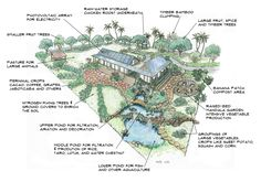 10+Acre+Farm+Layout+Plans | Sustain Yourself and a Family of 4 on a One Acre Tropical Mini-Farm
