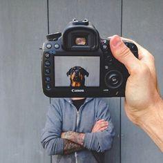 Fotos de Animales Creativas | MUNDOFLANEUR.COM | MUNDOFLANEUR.COM