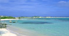 Famous Baby Beach in Aruba is a true Caribbean beach paradise. Baby Beach is a gorgeous half-moon sandy expanse in a calm lagoon. The waters are shallow making it a prime beach destination for families with children. Swimmers can wade out for a long distance and still touch the sea bottom.