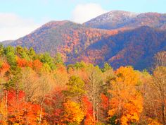 Cades Cove in the Fall !!