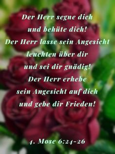 Bible Pictures, Bible Teachings, Love Yourself First, German Language, Text Messages, Word Of God, Gods Love, Verses, Faith