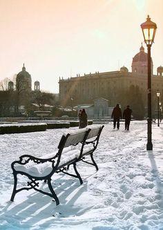 Volksgarten im winter- Wien...