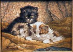 Cornelis Raaphorst - котята, приносящие славу: kot_de_azur