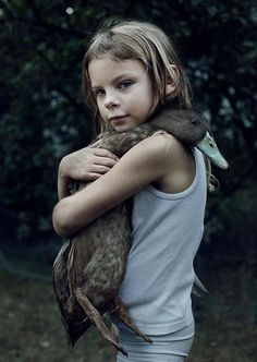 Ducks Are Actually Very Huggable... I want a pet duck!