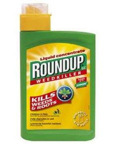 What do the experts have to say about The New England Journal of Medicine commentary about #glyphosate safety? Two specialists respond to commentary co-written by #antiGMO leader Chuck Benbrook.