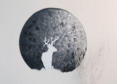 July was the month of the Full Buck Moon, named so because bucks begin to… Full Buck Moon, Interior Paint Colors, Behr, Its A Wonderful Life, Room Paint, Home Projects, Wall Murals, Diy Home Decor, Antlers