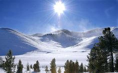 winter background pictures | 1440x900 Winter sun desktop PC and Mac wallpaper