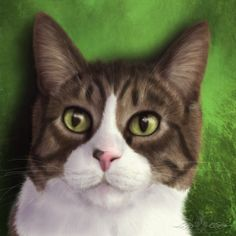 Want a drawing of your pet? I take pet portrait commissions! Please message me for quotes.