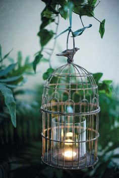 Mod Vintage Life: Birdcages in Decor