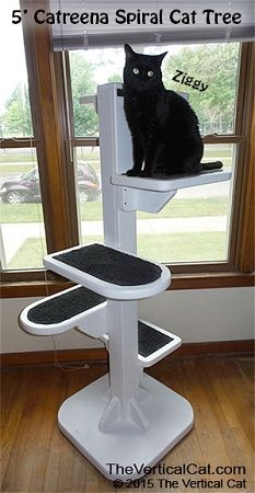 Cat room ideas on pinterest cat trees cat furniture and cat beds - Contemporary cat furniture ideas ...