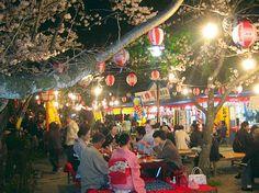 Hanami festivities in Kyoto's Maruyama Park