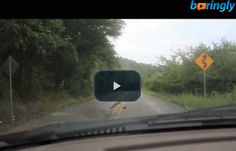 Nice guy #driving in the country road hits a deer and feels so bad about it #funnyvideos #fun #funny