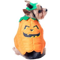 Pumpkin Dog Halloween Costume at #Walmart
