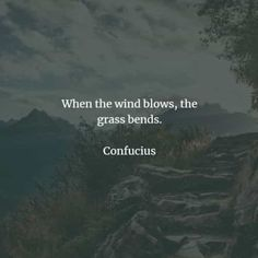 72 Famous quotes and sayings by Confucius. Here are the best Confucius quotes that you can read to learn more about his beliefs to acquire k. Confucius Say, Confucius Quotes, Stoicism Quotes, Knowledge And Wisdom, Famous Quotes, Bible Verses, Sayings, Reading, Life