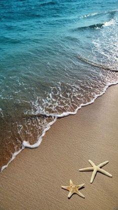 - holy shit - marvelous - starfish on a beach sand Stock Photo - 9786699 Ocean Wallpaper, Summer Wallpaper, Phone Backgrounds, Wallpaper Backgrounds, Cell Phone Wallpapers, Foto Transfer, Beach Scenes, Beach Pictures, Ocean Waves