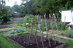 No link, just like the photo of this garden.