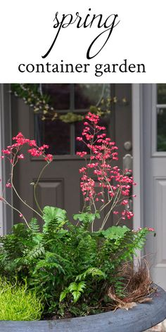 Ideas for a shady/low light Spring Container Garden using Coral Bells, Korean Rock Fern and Scotch Moss. Plus, using Lowe's plant tags for better grouping of plants.
