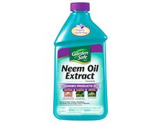 Neem Oil Extract- tip on how to get rid of spider mites using neem oil