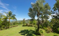 Horse Property for Sale in Innisfail County in Queensland. On offer is a distinctly different rural property providing an enviable lifestyle opportunity with exceptional views of the Johnstone River mouth, ocean and back towards the township of Innisfail.