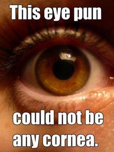 This eye pun could not be any cornea. Punny Puns, Puns Jokes, Stupid Jokes, Corny Jokes, Dad Jokes, Eye Puns, Science Jokes, Life Science, Cheesy Jokes